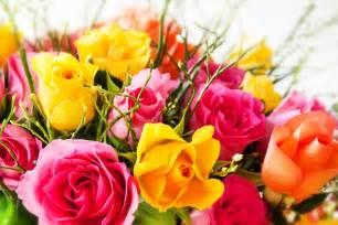 dossier offrir des fleurs pour la f 234 te des m 232 res
