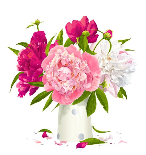 peony clipart vase with peonies clipart png m 1399672800