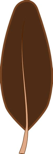 brown feather clipart explore pictures