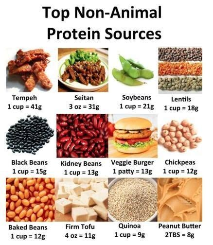 how many seed per gram a person only needs about 44 grams of protein per day