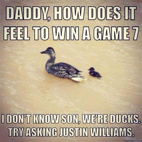 Anaheim Ducks Memes - anaheim ducks vs la kings los angeles l a kings pinterest