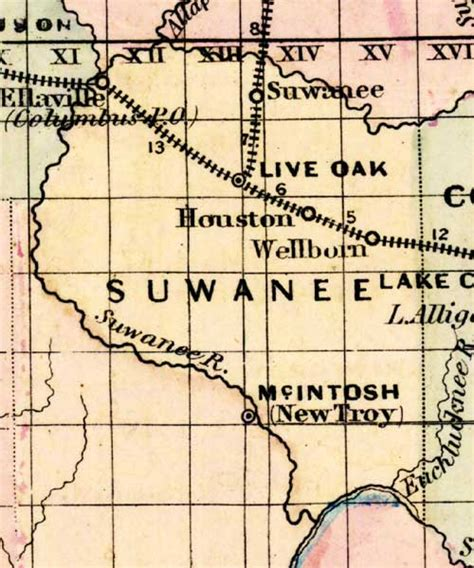 map of suwannee county florida map of suwannee county florida 1877