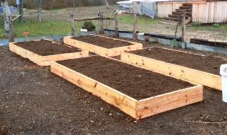 daddykirbs garden building filling raised beds