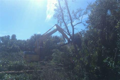 real tree melbourne excavation brevard county real tree demolition melbourne