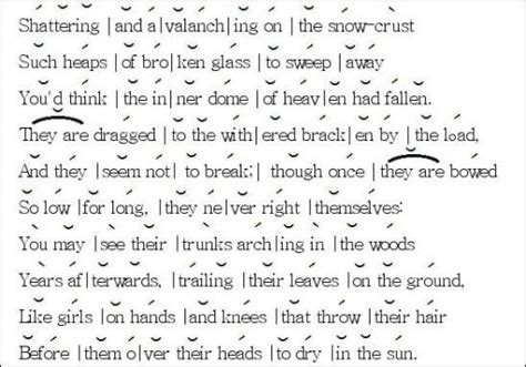 determine the pattern and name of the metrical foot used iambic pentameter robert frost s birches 171 poemshape