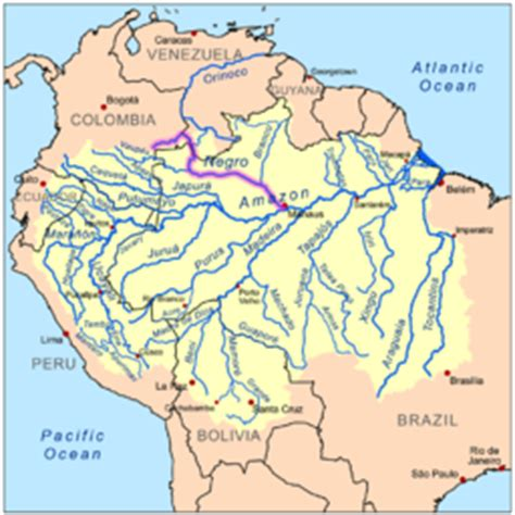 amazon river map map showing the rio negro in the amazon basin
