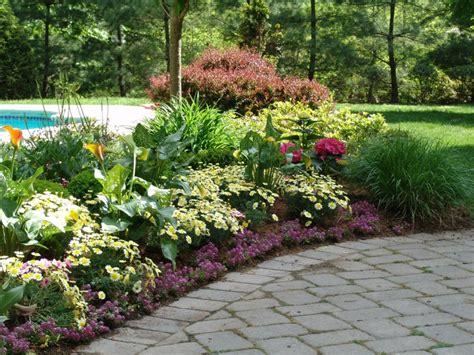 Perennial Flower Garden Ideas New Jersey Perennial Garden Perennial Flowers New Jersey New Jersey Flower Planting