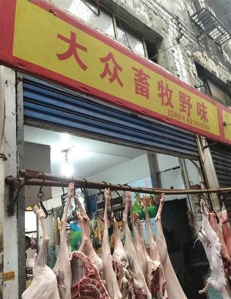 chinese food market   epicentre  deadly sars
