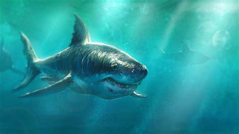 shark painting shark sketch by beaulamb1992