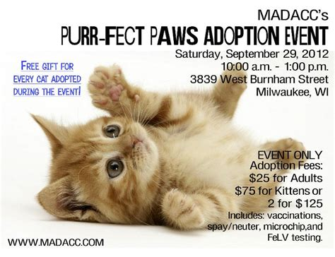 130 Cats Is Way Many by Friends Of Madacc Newsletter September 2012