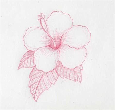 imagenes a lapiz flores dibujos de flores a lapiz buscar con google imagenes