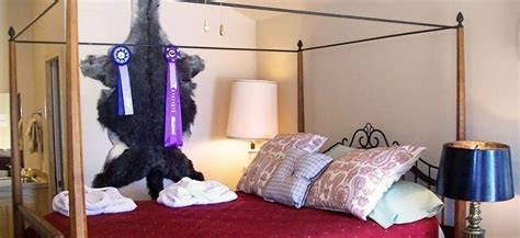 denton bed and breakfast guest rooms denton bed and breakfast old irish b b