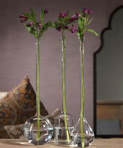 Long Vases Long Neck Vase Transitional Vases By Bliss Home And