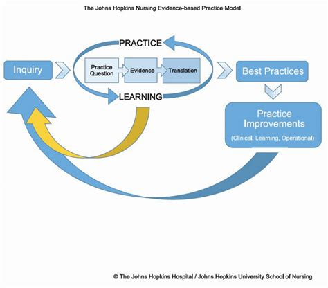 Exploring Evidence Based Practice 2017 ebp models and tools