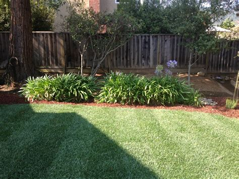 Landscape Design San Jose Professional Patio Designs Landscaping San Jose Bay