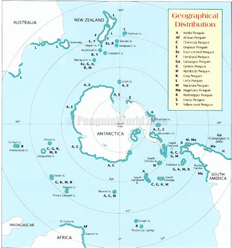 where do penguins live map geographic distribution of penguins summer school