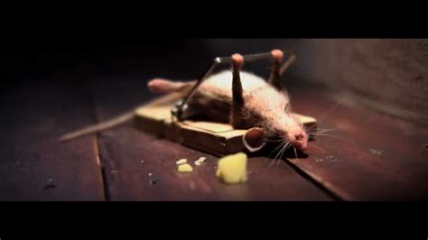 funny mouse nolan s cheddar commercial youtube