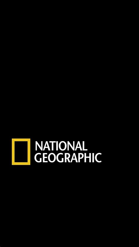 Polo National Geographic Logo national geographic logo logo s graphique tv et graphiques