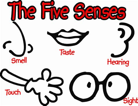 5 senses coloring page coloring home the five senses coloring pages coloring home