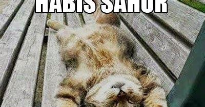 Lu Tidur Lucu gambar meme kata2 saur lucu bahasa jawa gambar lucu terbaru