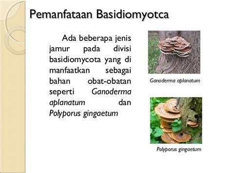Mikrobiologi Parasitologi tugas fungi kelompok a mikrobiologi dan parasitologi