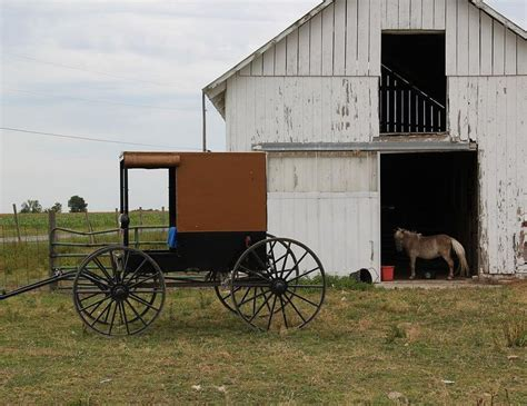 Amish Valley Sheds by 1000 Images About Amish From New York State On