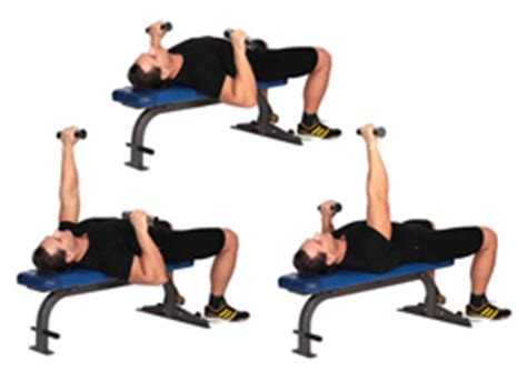 dumbbell alternating bench press dumbbell exercises dumbbell workouts
