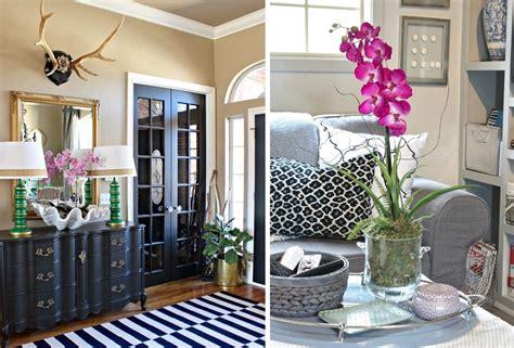 manutenzione orchidee in vaso orchidee per decorazioni eleganti e delicate idee