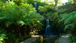Hotels Near Botanical Gardens Melbourne Waterfall Pictures View Images Of Australia