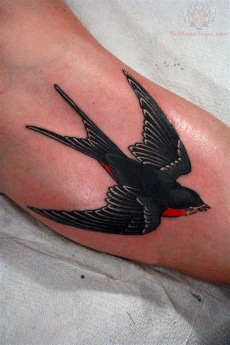 what does a sparrow tattoo mean best 25 traditional ideas on