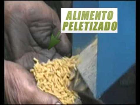 peletizadora  alimento balanceado modelo plavi youtube