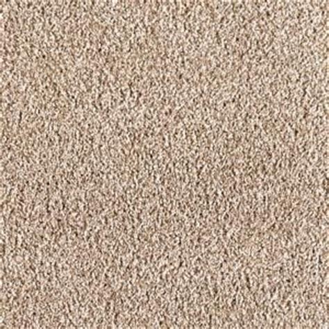 softspring ravishing i color shoreline 12 ft carpet