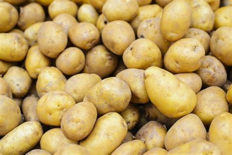 carbohydrates potatoes what vegetables are high in carbohydrates livestrong