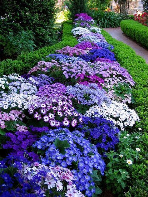 Blue Garden Flower Xardinnova Jardines Con Flor De Temporada