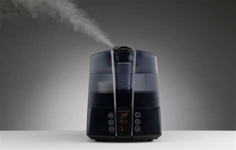 top   warm mist humidifiers   reviews pei