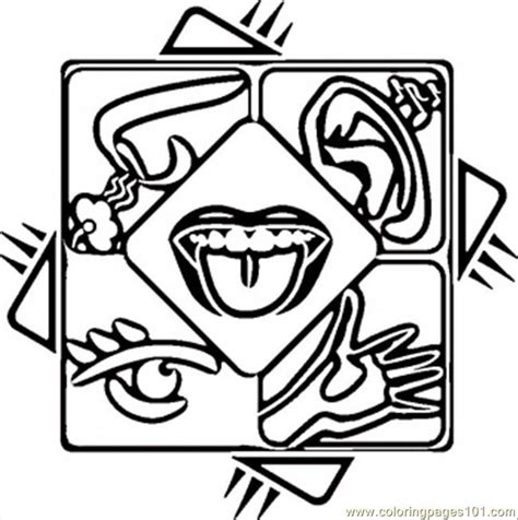 My Five Senses Coloring Pages Coloring Home Five Senses Free Coloring Pages