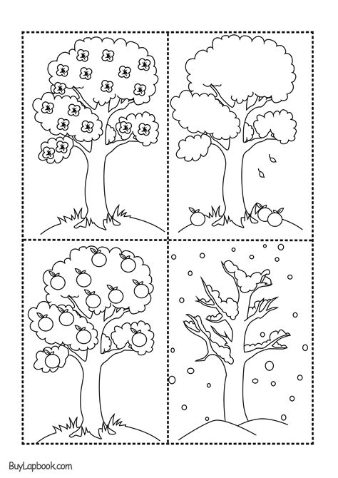 The Four Seasons of the Apple Tree Printables – BuyLapbook
