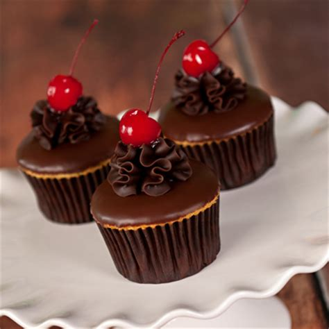 Gourmet Cupcakes by Gourmet Cupcakes Boston Gourmet Cupcake