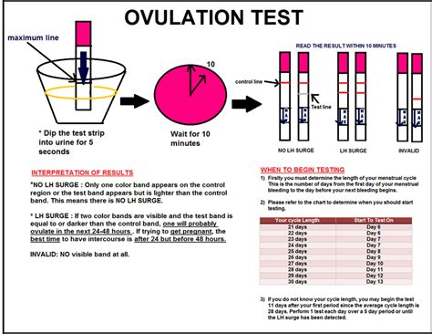 Alat Ovulation Test nak mengandung cepat supaya suami tak kahwin