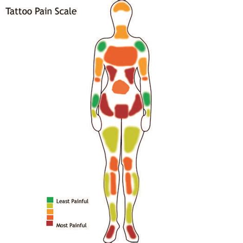 how much does a tattoo hurt 19 best images about charts how much does it hurt