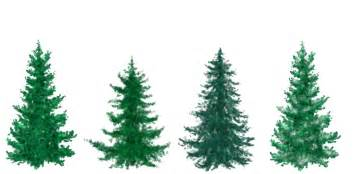 free painted christmas trees by silverbeam on deviantart