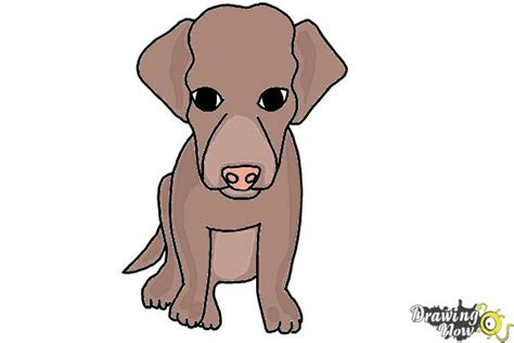 how do you draw a puppy how to draw a puppy drawingnow