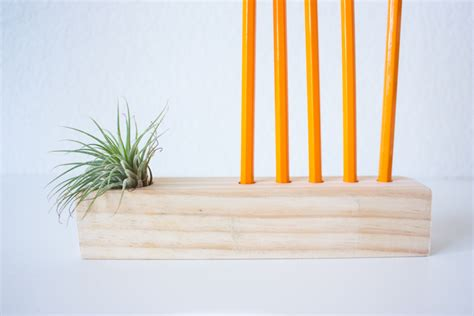 diy air plant holder simple pencil and air plant holder diy