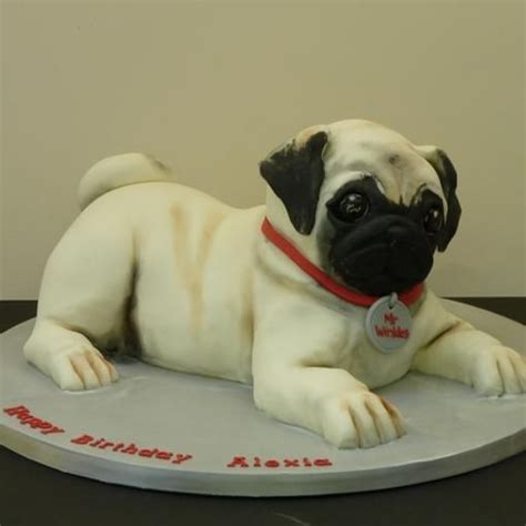 pug cake the world s catalog of ideas