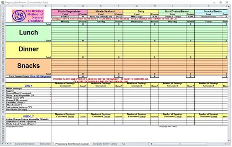 nutrition spreadsheet template pregnancy diet spreadsheet pregnancy diet template