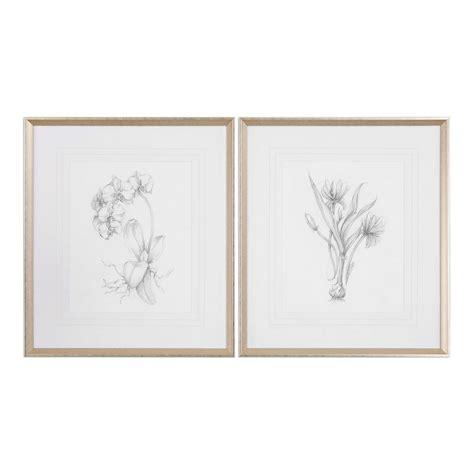 Uttermost Botanicals Uttermost Botanical Sketches Framed Prints S 2