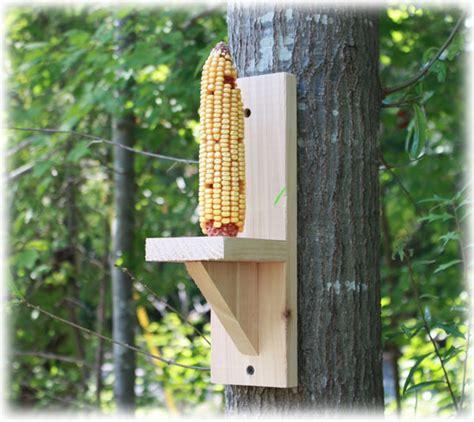 diy bottle squirrel feeder bird feeder