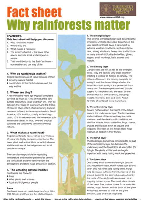 rainforest factsheets by theprincesrainforestproject