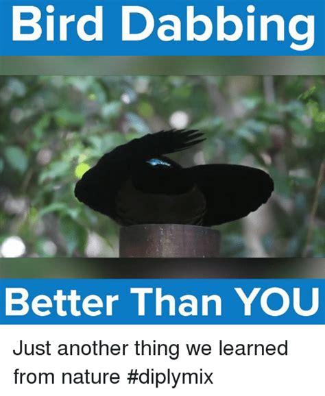 is dabbing better than 25 best memes about bird dabbing bird dabbing memes