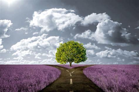 el camino con una b000pgk644 191 retrasas siempre tus tareas c 243 mo vencer tu procrastinaci 243 n